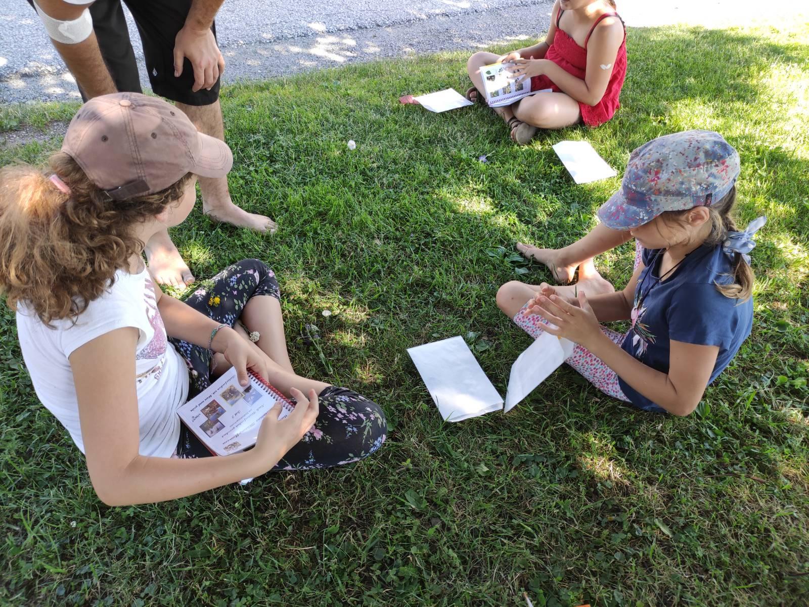 Projekttag: Kräuterwanderung